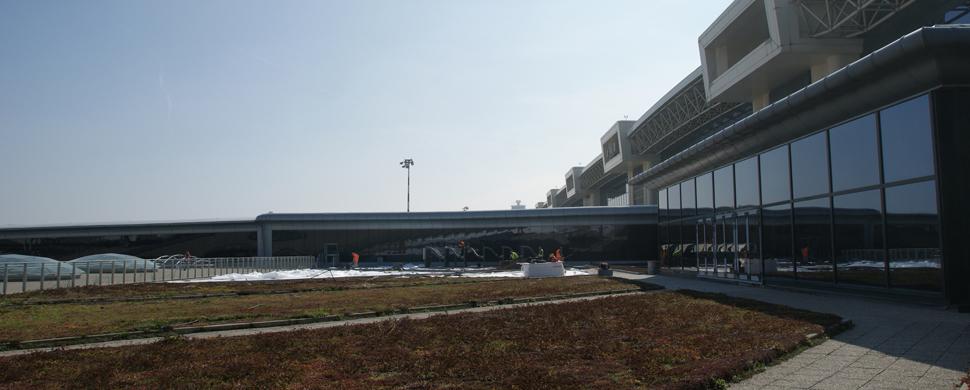 Malpensa Airport Green Roof 3
